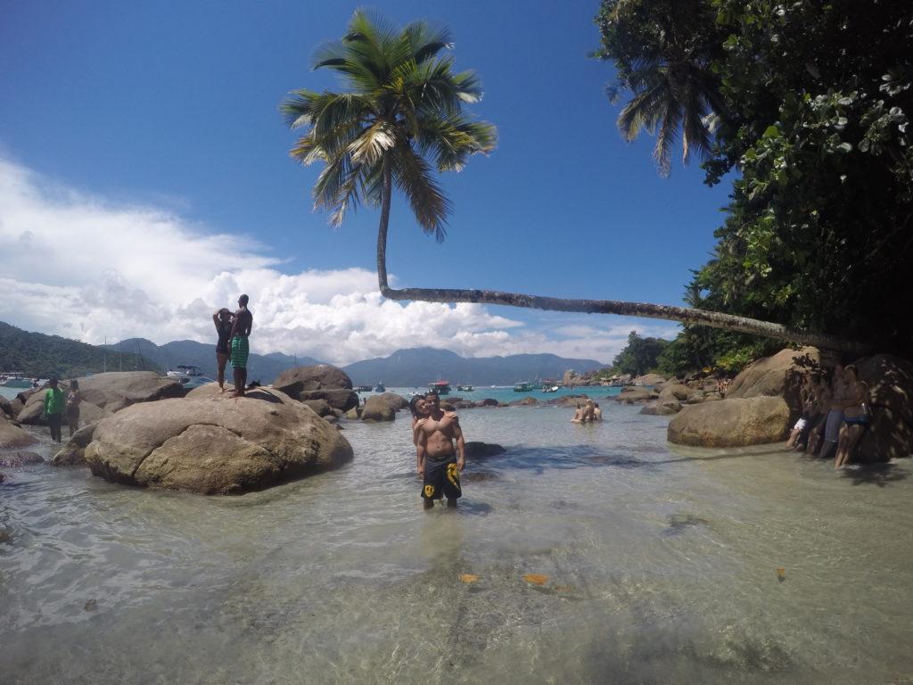Praia de Aventureiros, coqueiro torto. Ilha Grande